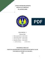 Plasmolisis Rhoeo discolor