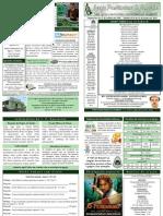 BOLETIM DOMINICAL DE 24-01-10