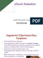 Craniofacial Anomalies Part 3