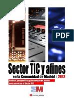 informe sector tics madrid_2013.pdf