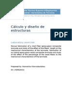 Fundamental Theory - Proyecto Materiales Compuestos