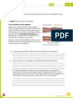 FichaAmpliacionNaturales5U2