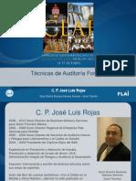 José Luis Rojas-Técnicas de Auditoría Forense