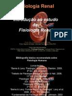 Histologia Renal