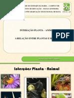 Interação Planta-Lagartos FINAL