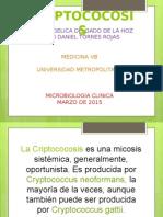 Criptococcosis 1