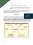 Respuestas Documento Dos Tendencias Actuales en La Teoria Sociocultural