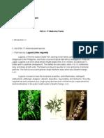 17 Medicinal Plants HW