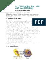 UNIDAD 8. la célula y la nutrición celular.doc