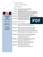 Curriculum Cristian Pallauta