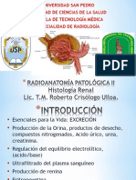 Histologia Renal.ppt