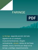 FARINGE - OTORRINO