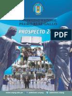 Prospecto Universidad Nacional Pedro Ruiz Gallo 2015