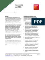 DPA_Hoja_Informativa_Centro_de_Inyeccion_Supervisado_Abril_de_2015.pdf