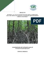 ITTO Inventario Forestal..