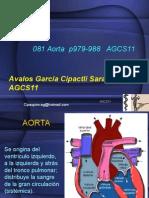 Aorta-Anatomía