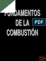 1. Fundamentos de La Combustión - Carlos Correa[1]