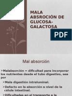 Biologia de Azucares
