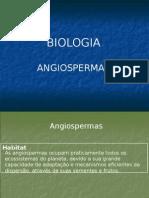 207_341grupos_angiospermas