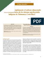 medicion de carbono en cacaotales