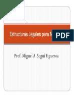 estructuras_legales