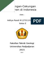 Cekungan Sedimen Indonesia