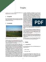 Tröglitz.pdf