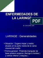 Enfermedades de La Laringe
