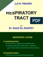 13- Respiratory System