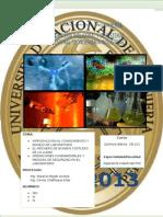 Informe 1 Quimica Basica