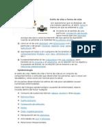 ESTILO DE VIDA.docx
