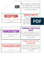 Visual Perception Flashcards