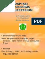 ADAPTASI FISIOLOGIS PUERPERIUM