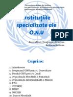 Institutiile Specializate Ale ONU