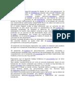 CEMENTO TRANSLUCIDO INFORME