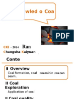 Basic Knowledge of Coal