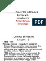 Dreptul Afacerilor În Uniunea Europeana