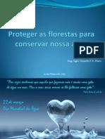 Proteger as florestas para conservar nossa água