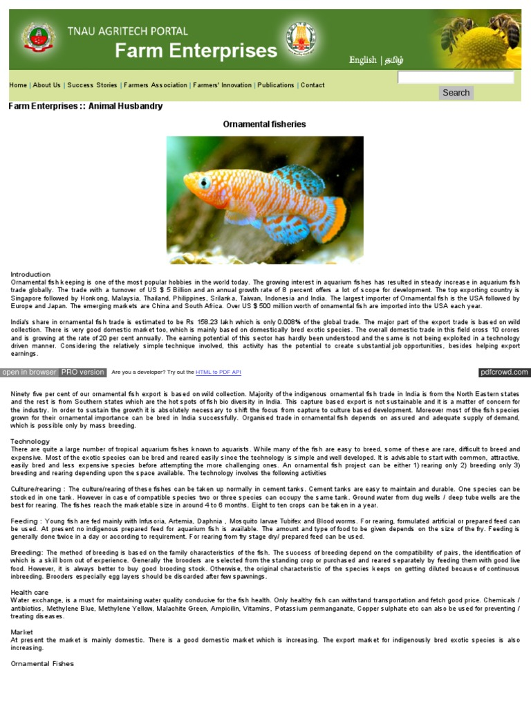 Ornamental Fish Farming Fishkeeping Aquarium