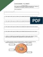 Guía de Aprendizaje de La Celula 5to Basico