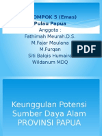 IPS Provinsi Papua.pptx