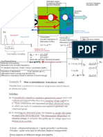 Medical Physics secondaty level slides