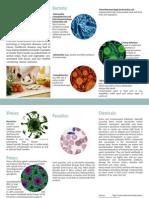 World Health Day 2015 -  Foodborne Illnesses.pdf
