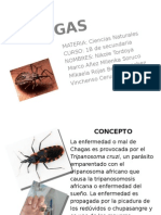 informacion del chagas.pptx