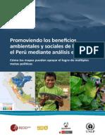 Peru Promoviendo Los Beneficios