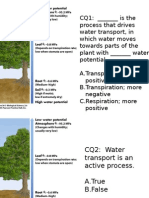 Plant Biology - Water Transport