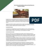 Fichas Técnicas de Las Principales Razas Productivas en Nuestra Región