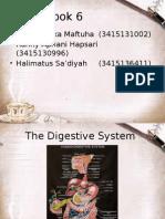 kelompok 3-SIstem pencernaan.pptx