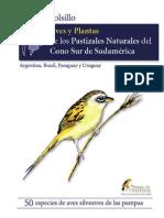 Guia de Campo Aves y Plantas de Los Pastizales Naturales Del Cono Sur de Sudamerica