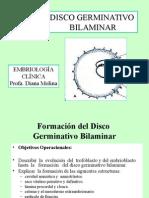 disco bilaminar